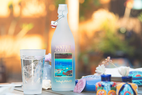 Gallery Drinkware's Wyland Ancient Mariner bottle and reversed frost sea turtle pint