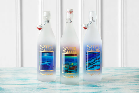 Gallery Drinkware's most recent Wyland bottles, featuring Shark Reef, Ancient Mariner, and Companions of the Sea