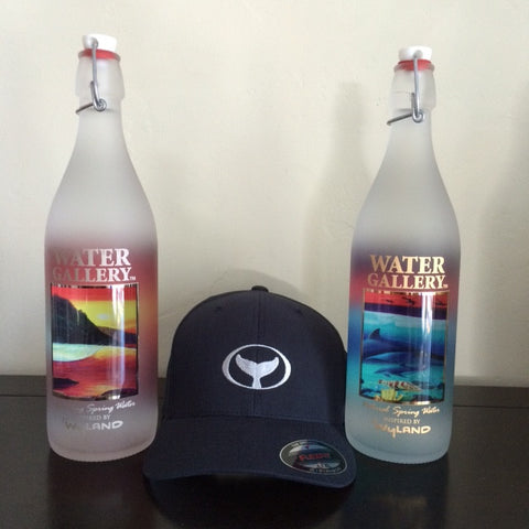 Of course many love to give Water Gallery glass water bottles as unique gifts, perhaps with a Wyland hat or