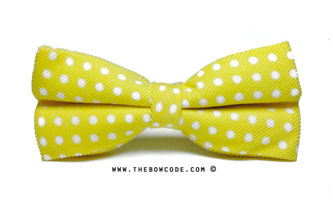 Yellow Bow Tie Singapore