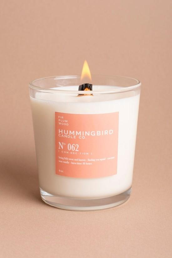 Hummingbird Candle Co. 9 oz Candle