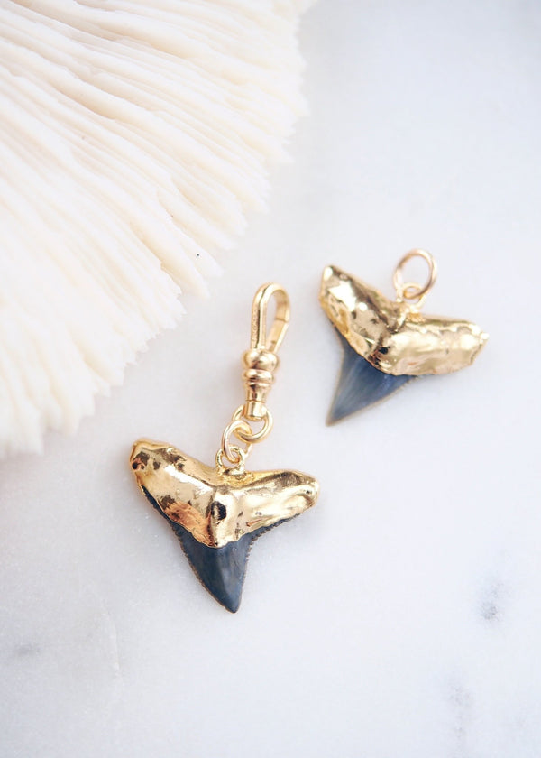 Charm - Fossilized Gold Plated Shark Tooth Charm - Ke Aloha Jewelry