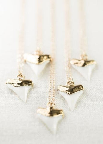 Gold Dipped White Shark Tooth Necklace - Mano Niho Kahi - Ke Aloha Jewelry