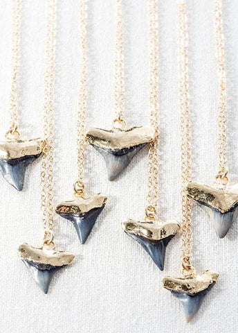 Gold Shark Tooth Necklace - Bottled Mano Niho Kahi Black - Ke Aloha Jewelry