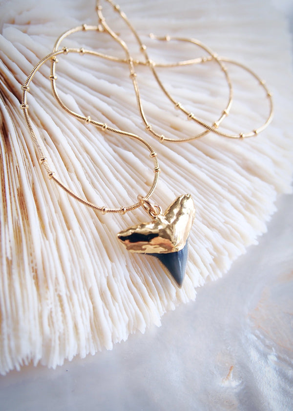 Gold Necklace - Gold Shark Tooth Necklace on Twin Dot Gold Snake Chain - Mano Niho Kahi Black II - Ke Aloha Jewelry