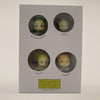 Yasai no Yousei: N.Y. Salad Amano 4 Piece Mini Figure