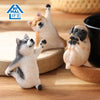 ANIMAL LIFE UNION CREATIVE Baby Yoga Dog (Box of 8 Blind Box)