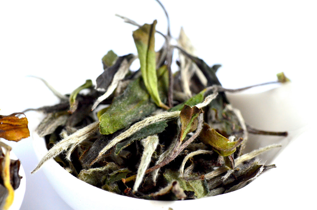 NEW! Pre-Spring 2019 BaiMuDan White tea