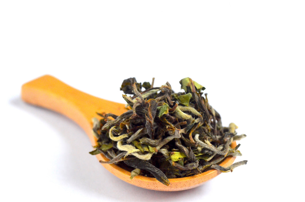 Darjeeling Spring 2019 First Flush Glenburn Moonshine
