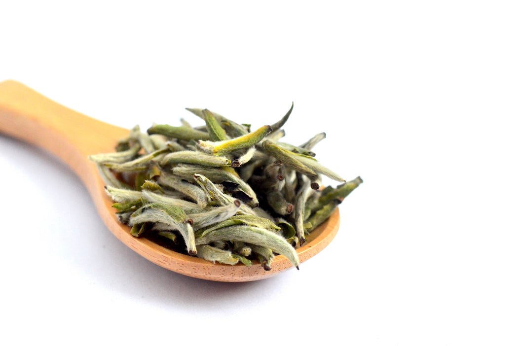 NEW! Spring Harvest 2019 Fuding Silver Needle (Baihao Yinzhen) White Tea