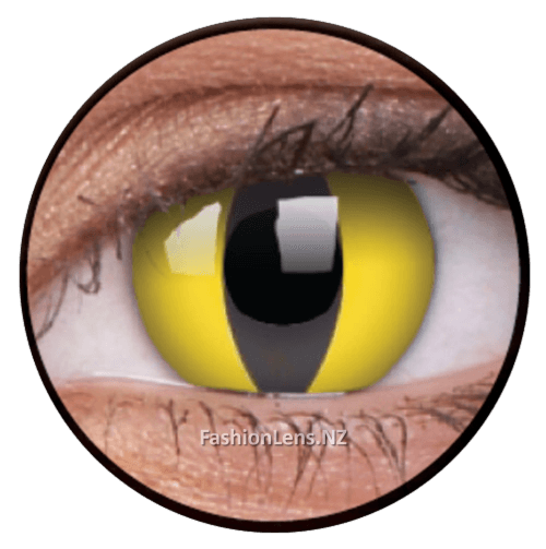 Crazy cateye ColourVue Contact Lenses. Fashion Lens NZ.