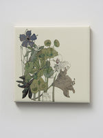 Mackintosh Spurge Ceramic Coaster