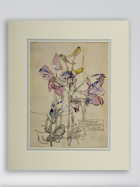 Mackintosh 'Larkspur' Flower Print