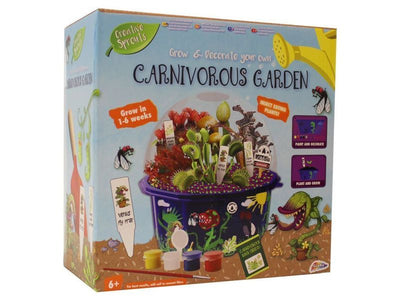 Grafix Creative Sprouts Grow & Decorate Your Own Carnivorous Garden