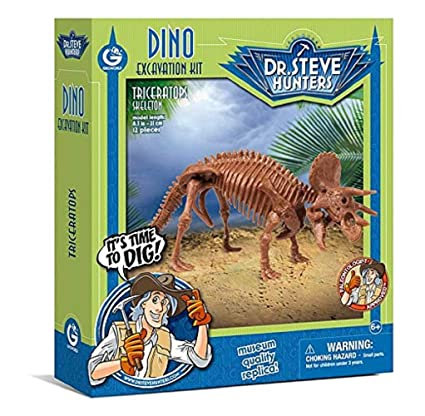 Dr Steve Hunters Dino Excavation