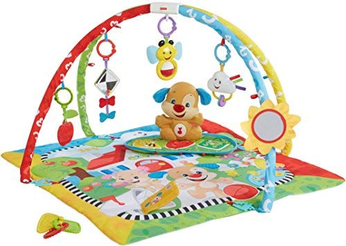 Fisher Price Laugh & Learn Gym