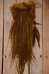Long Hair Feathers | 11-14 inches