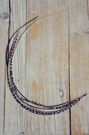 feather extension ying yang