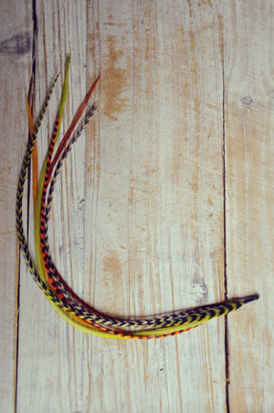 feather extension olive
