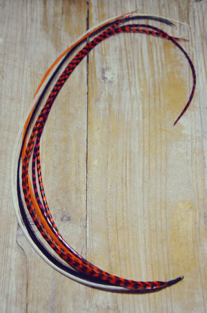 long hair feathers orange