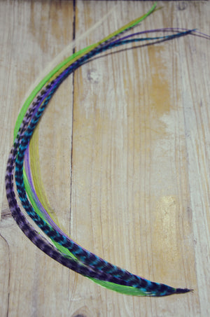 extra long feather extension peacock