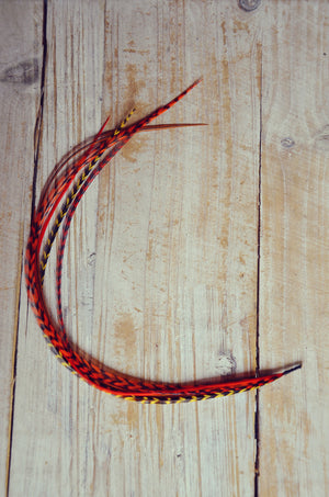 red feather extension