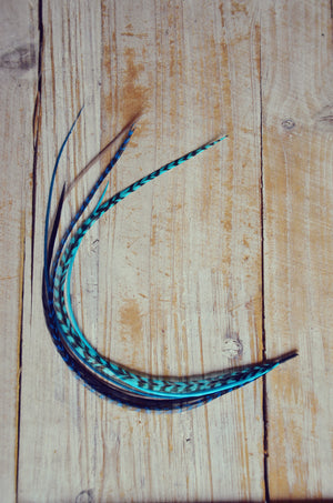 teal feather extension