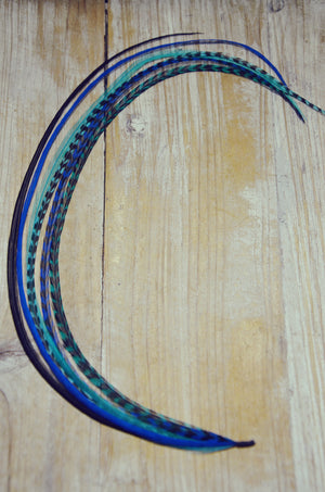 extra long feather extension teal