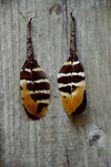 tiger Striped feather earrings