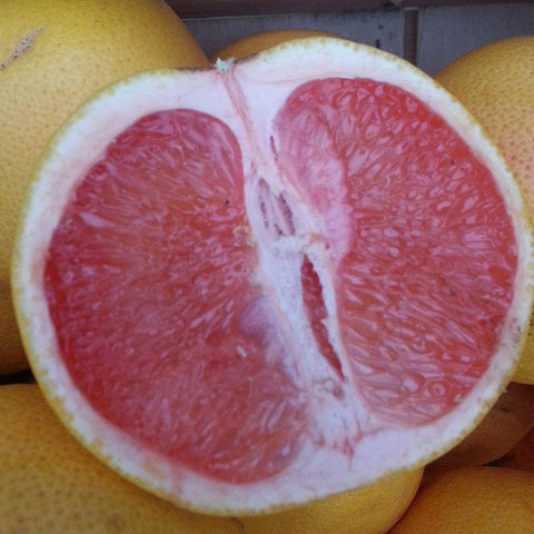 Grapefruit - Ruby Star - Vegetropolis Organic Fruit and Veg Delivery Service