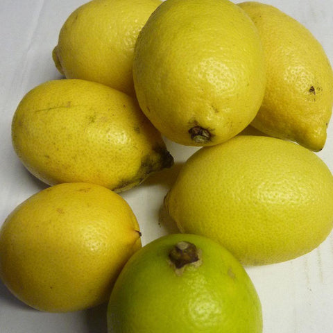 Lemons - Vegetropolis Organic Fruit and Veg Delivery Service