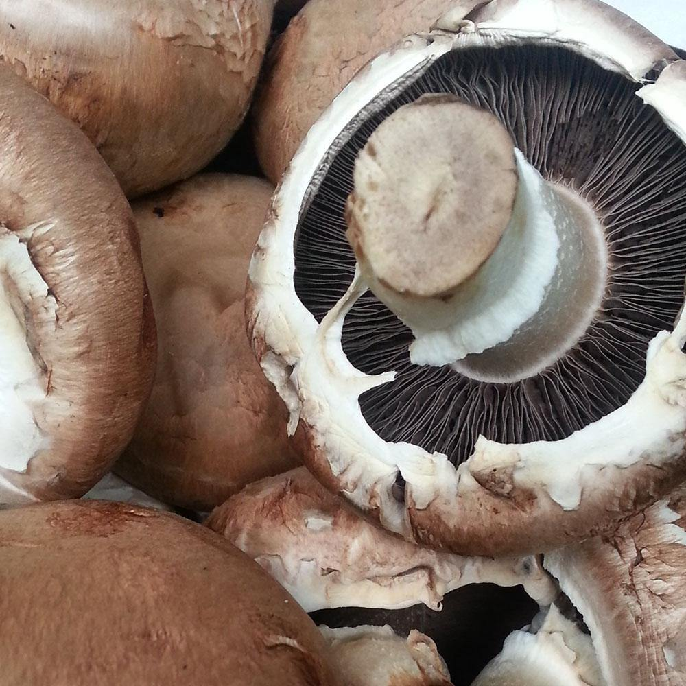 Mushroom - Chestnut Brown - 200g - Vegetropolis Organic Fruit and Veg Delivery Service