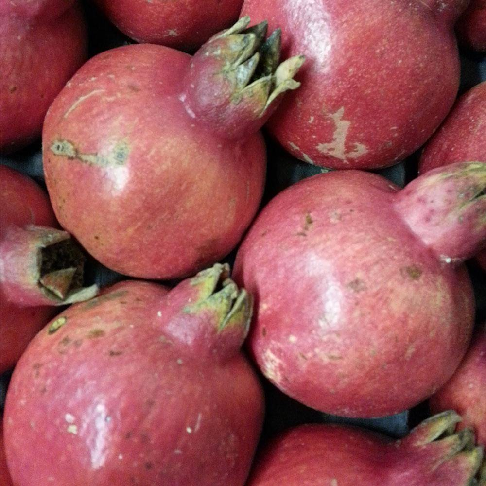 Pomegranate - Vegetropolis Organic Fruit and Veg Delivery Service