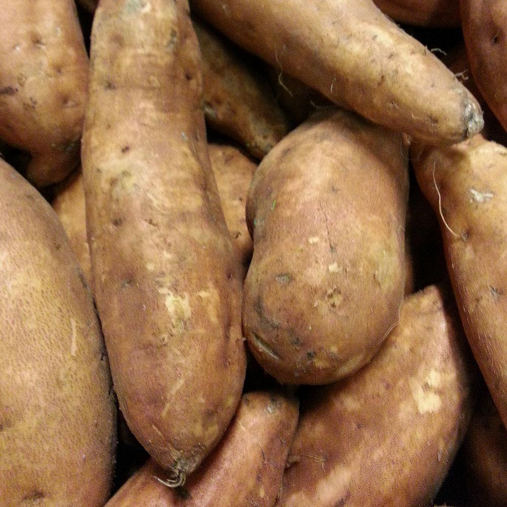 Sweet Potatoes - Vegetropolis Organic Fruit and Veg Delivery Service