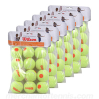 Wilson Starter Game Tennis Ball Case