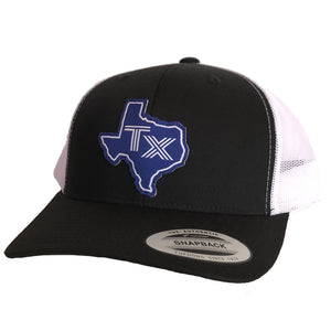 TX Silhouette Blue Patched Curved Bill Hat