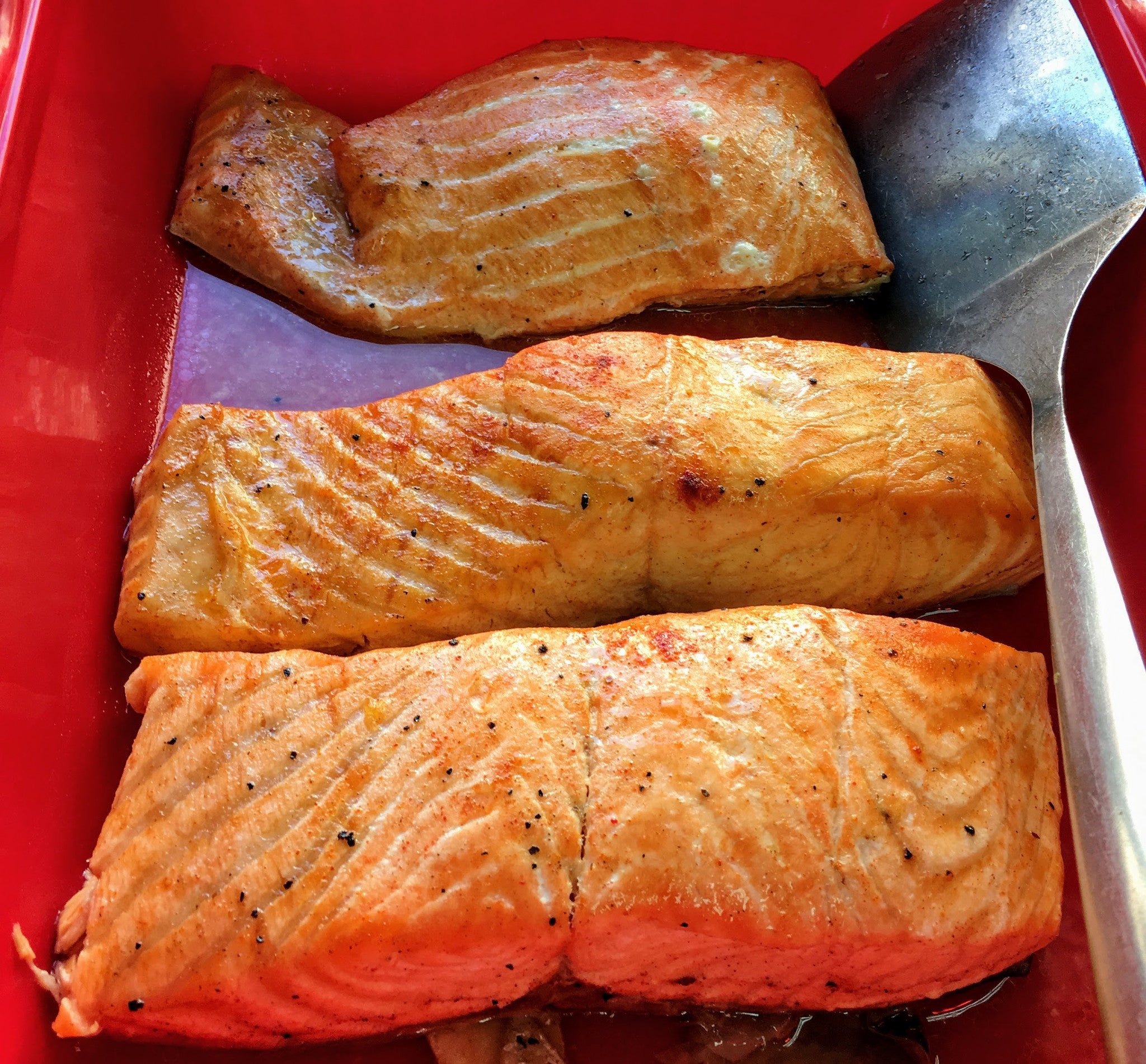 Kosher Fish Salmon