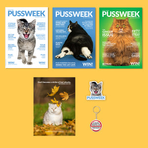 Pussweek Ultimate Autumn Pack!