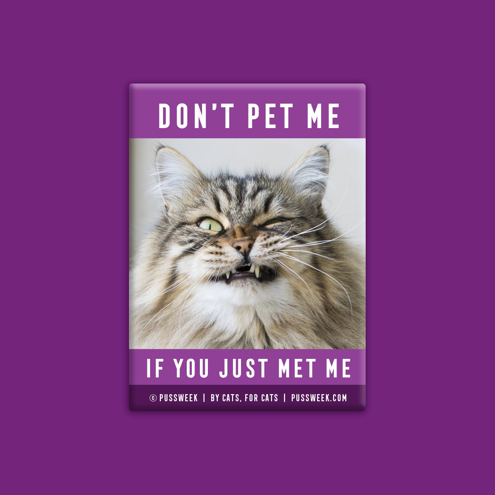 Don't Pet Me - Deluxe Magnet