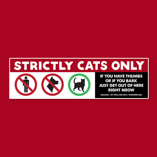 Pussweek Strictly Cats Only bumper sticker