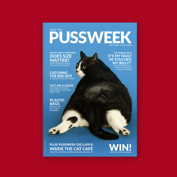 Pussweek Issue Two