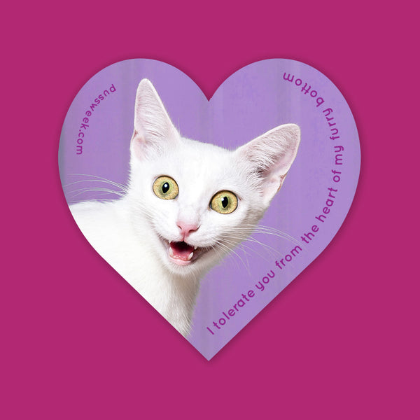 Pussweek I Tolerate You heart sticker