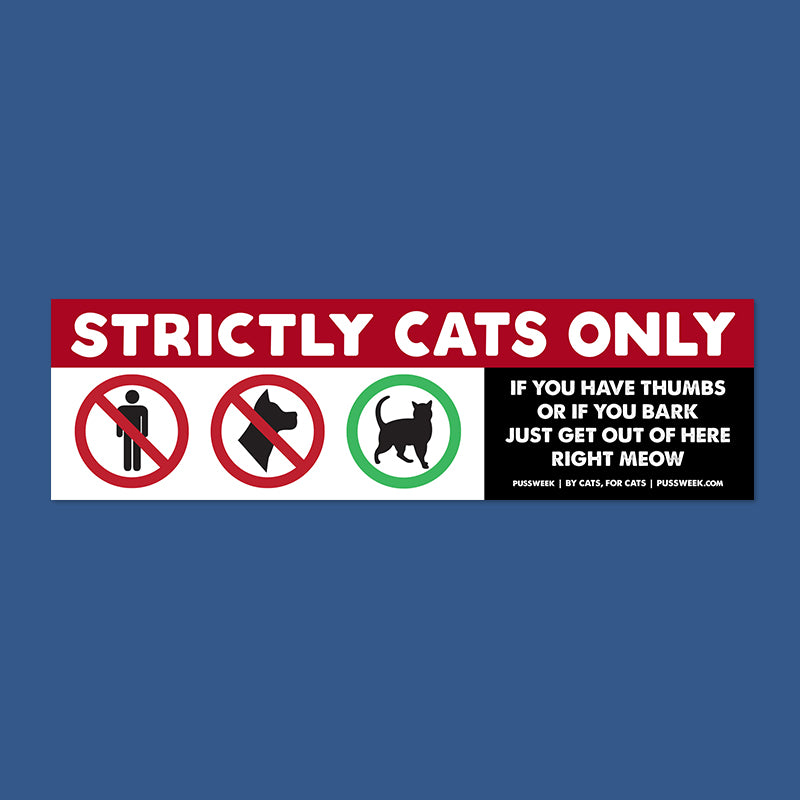 Strictly Cats Only bumper sticker
