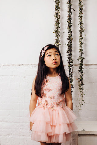 Pink Butterly Dress