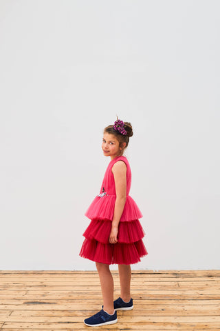 Two Toned Layered Pink Tuelle Dress