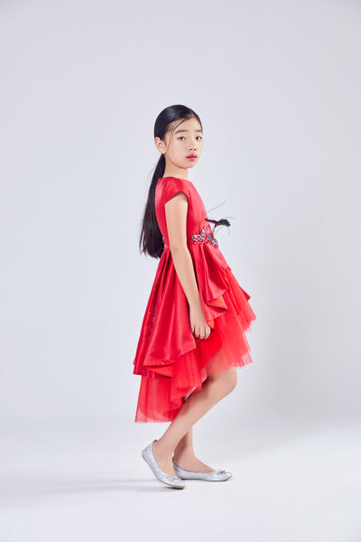 Royal Red Satin Butterfly Dress