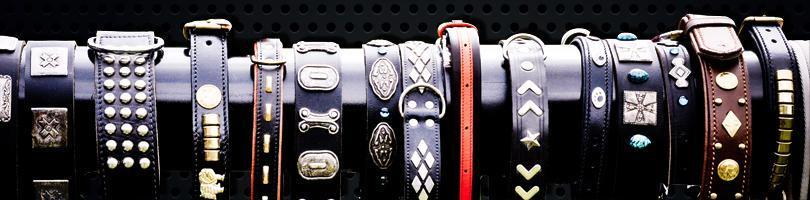 Choosing Your First Slave Collar