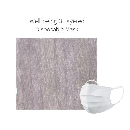 Well-Being Disposable 3 Layered Filter Masks 30 PCS ( 5ea x 6 PACK ) - KosBeauty