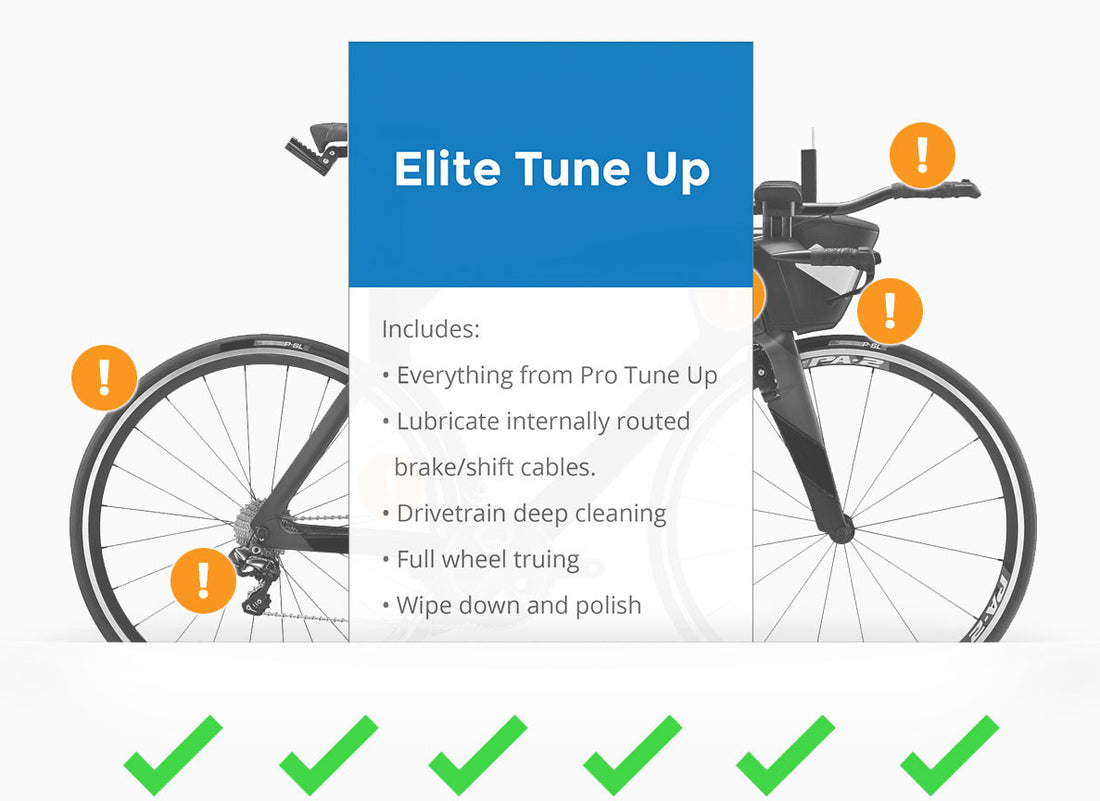 Bike Tune Up >> Elite Tune Up Bikes And Life Race Day Service