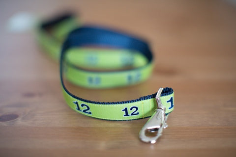 12th Dog Leashes